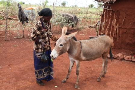 woman receiving donkey from ERDO program in Northern Kenya