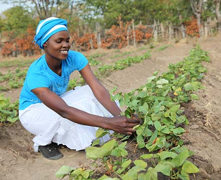 A woman checks on her crops